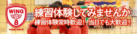 東京都府中市の小学生バレーボールチーム見学体験